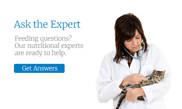 Ask the Expert. Feeding questions? Our nutritional experts are ready to help.