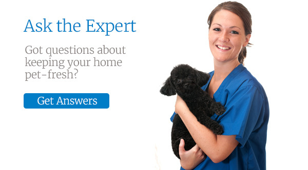 Got questions about keeping your home pet-fresh? Ask the expert.