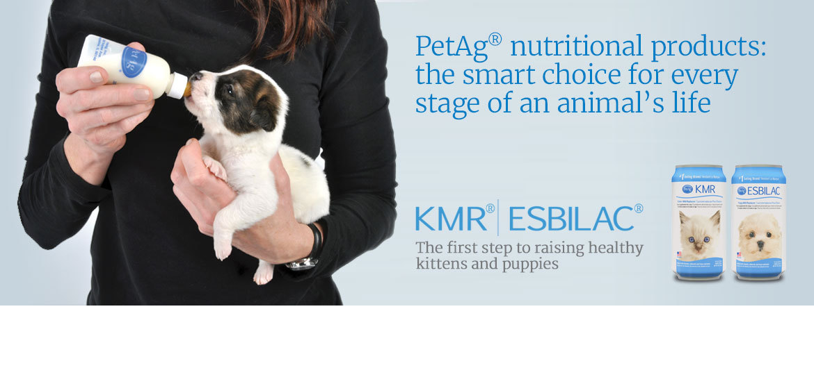 Woman feeding a puppy, featured products KMR® | Esbilac®