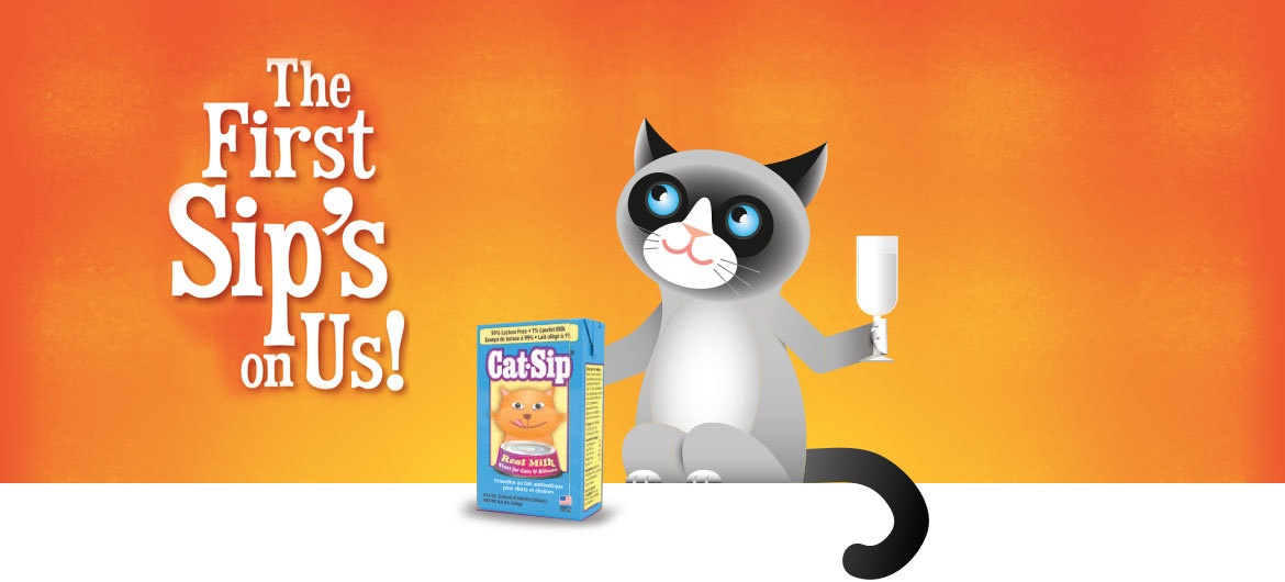 Cat-Sip. The First Sip's On Us!